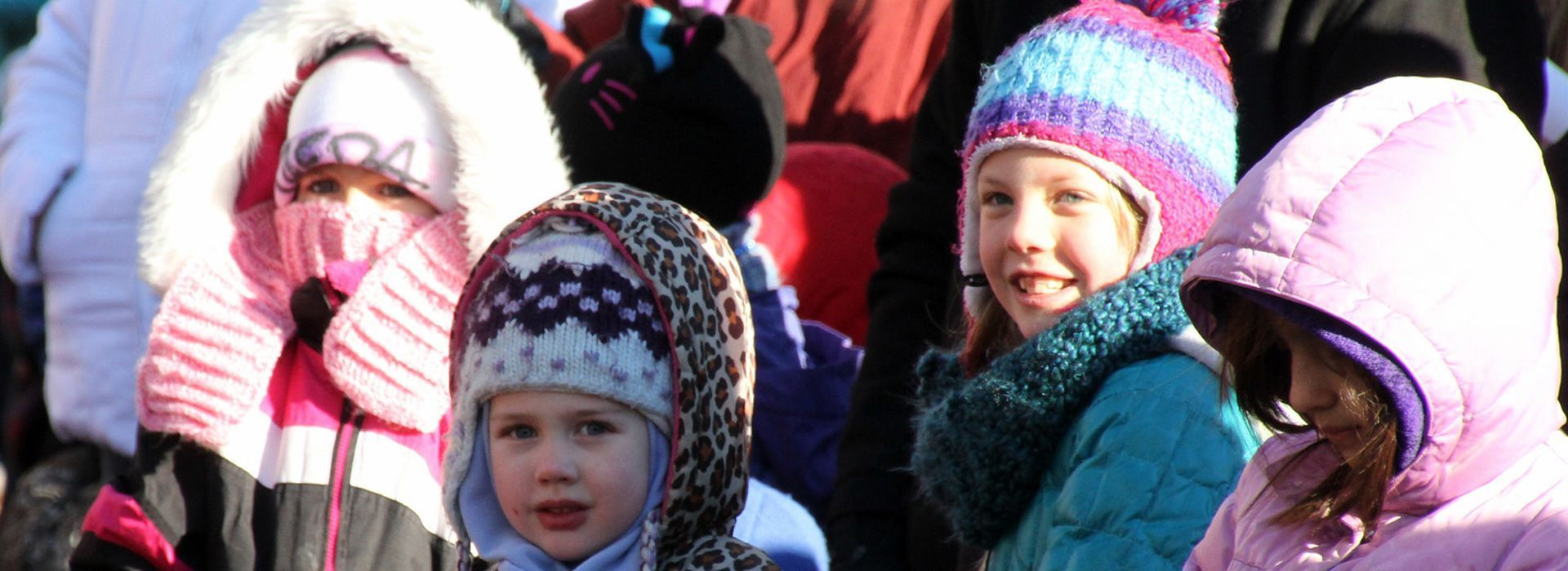 frequently asked questions saint paul winter carnival
