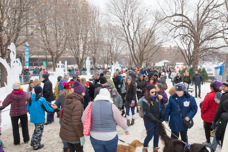 Parades - Saint Paul Winter Carnival